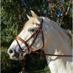 "handmade ""English"" Bridle"