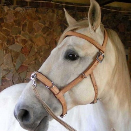 Handmade natural leather lunging cavesson ELEVAGE w/o nose iron and with optional browband