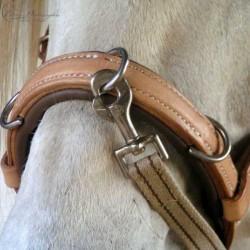 ELEVAGE Nasenband ganz in festem Leder ohne Metalleinlage für eine gute Passform